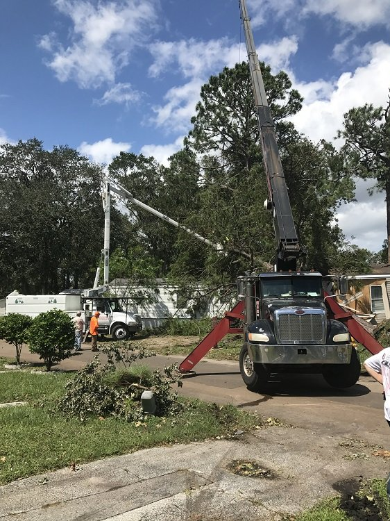 eagerton crane