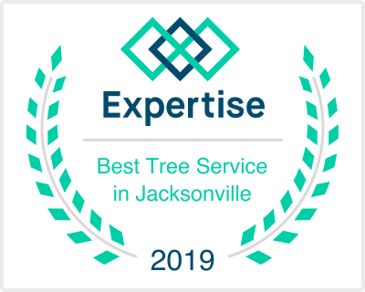 Best Tree Service in Jacksonville | Expertise 2019